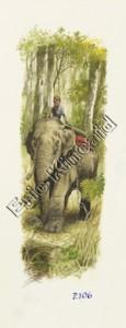 Jungle Book page 106  elephant & rider