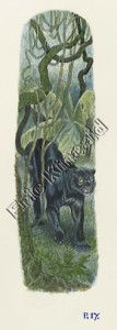 Jungle Book page 17 the panther