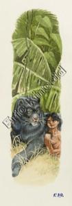 Jungle Book page 19 Mogli with panther