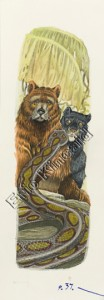 Jungle Book page 37 the panther bear & snake