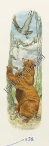 Jungle Book page 38 the bear & hawk